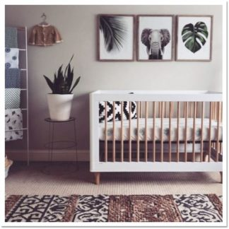 Themed Rooms & Nursery Rooms